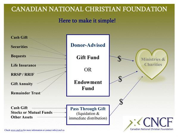 Social Capital Sheet1 Sm